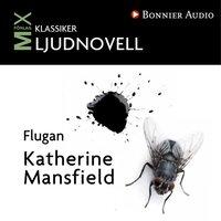 Flugan - Katherine Mansfield