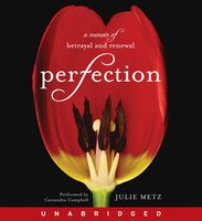 Perfection - Julie Metz