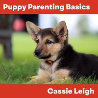 Puppy Parenting Basics - Cassie Leigh