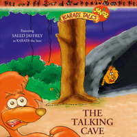 The Talking Cave - Sheila Gandhi