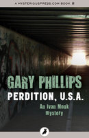 Perdition, U.S.A. - Gary Phillips